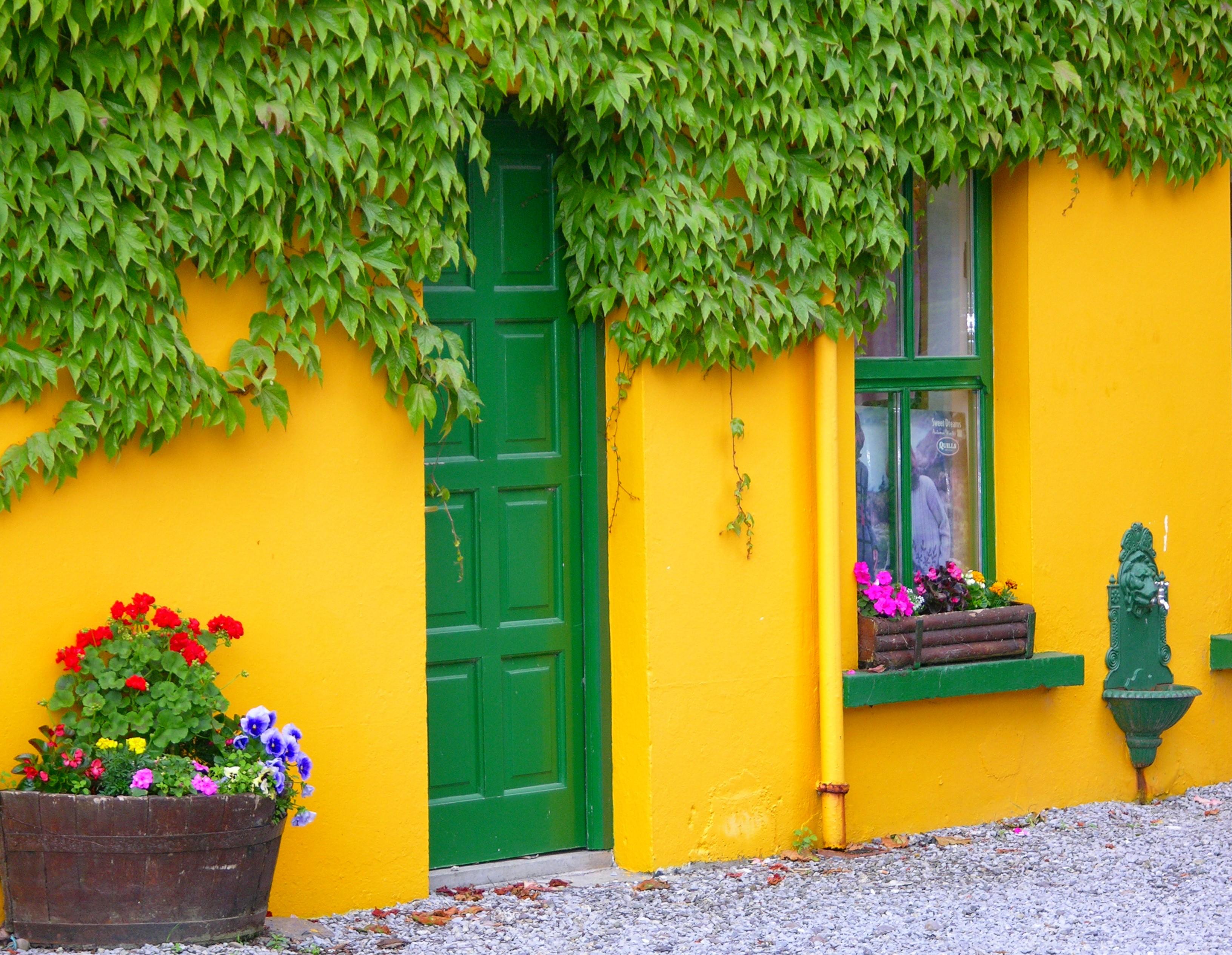 Business plan green house start up nursery new 08