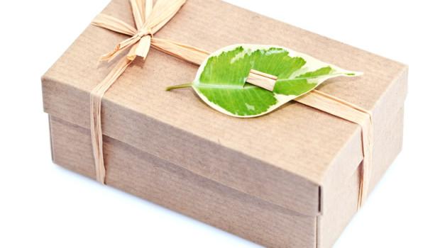 Paquet cadeau emballage écologique