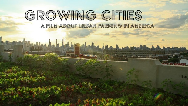 Urban Farming Documentary Needs a Kickstart to Be Aired on PBS