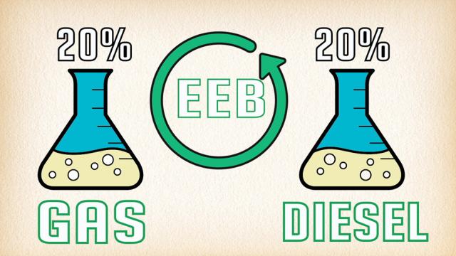 EEB-20-percent