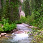 ecotourism's responsibility