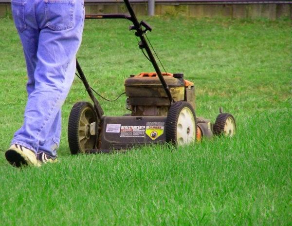 man using push lawnmower to mow yard